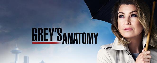 Anticipazioni Grey's Anatomy 13